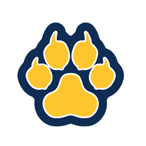 PNG Paw